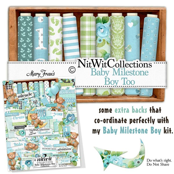 Bundled - Baby Milestones Boy Collection - Click Image to Close