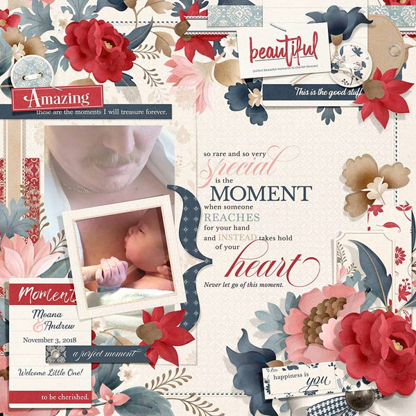 Bundled - Moments Collection - Click Image to Close