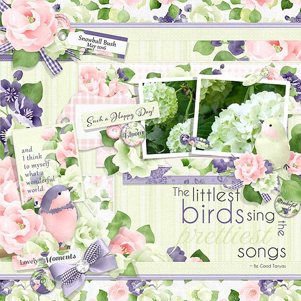 FQB - Birdsong Collection - Click Image to Close